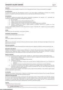 Amissima - Amissima Valore Azienda - Modello 60022 Edizione 01-2019 [64P]