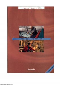 Assitalia - Piccola Industria - Modello nd Edizione 2001 [27P]