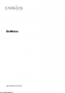 Cargeas - Blu Mutuo - Modello 1634 Edizione 01-01-2019 [26P]